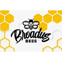 Broadus Bees